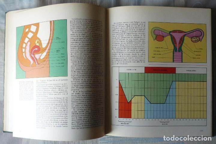 Enciclopedias de segunda mano: DOS LIBROS DE LA ENCICLOPEDIA BASE / 10 CONSULTOR DIDACTICO - Foto 4 - 80821459