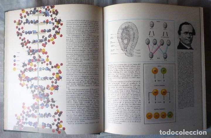 Enciclopedias de segunda mano: DOS LIBROS DE LA ENCICLOPEDIA BASE / 10 CONSULTOR DIDACTICO - Foto 6 - 80821459