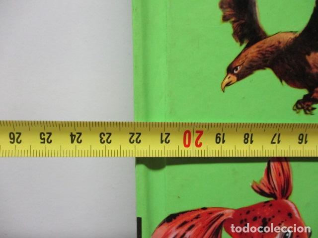 Enciclopedias de segunda mano: MI ENCICLOPEDIA LOS ANIMALES.-EDICIONES GAISA-S/F - Foto 2 - 83863420
