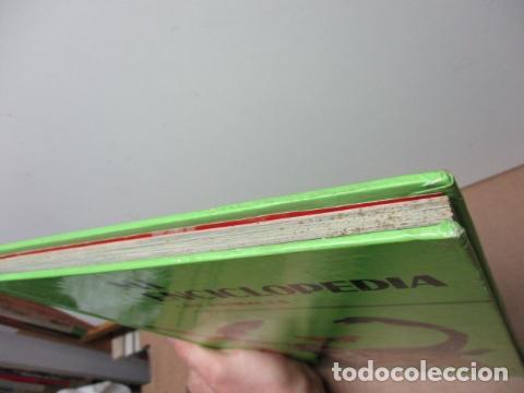 Enciclopedias de segunda mano: MI ENCICLOPEDIA LOS ANIMALES.-EDICIONES GAISA-S/F - Foto 5 - 83863420