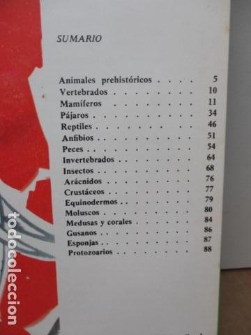 Enciclopedias de segunda mano: MI ENCICLOPEDIA LOS ANIMALES.-EDICIONES GAISA-S/F - Foto 8 - 83863420
