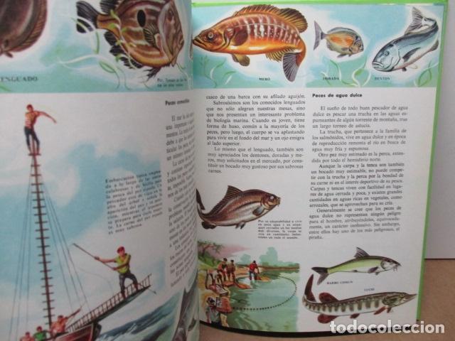 Enciclopedias de segunda mano: MI ENCICLOPEDIA LOS ANIMALES.-EDICIONES GAISA-S/F - Foto 10 - 83863420