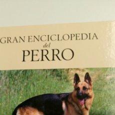 Enciclopedias de segunda mano: GRAN ENCICLOPEDIA DEL PERRO. PERROS DE PASTOR. ( VOLUMEN 1) . Lote 84315222