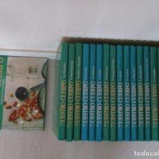 Enciclopedias de segunda mano: DONALD M. ENGRLMAN, VV. AA. MARAVILLAS DE NUESTRO CUERPO. DIECIOCHO TOMOS. RMT81091. . Lote 87532312