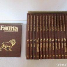 Enciclopedias de segunda mano: FÉLIX RODRÍGUEZ DE LA FUENTE. ENCICLOPEDIA DE LA FAUNA. QUINCE TOMOS. RMT81106. . Lote 88155448