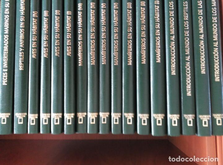 Enciclopedias de segunda mano: NATIONAL GEOGRAPHIC - EL MARAVILLOSO MUNDO DE LOS ANIMALES - 17 TOMOS - Foto 2 - 90113628