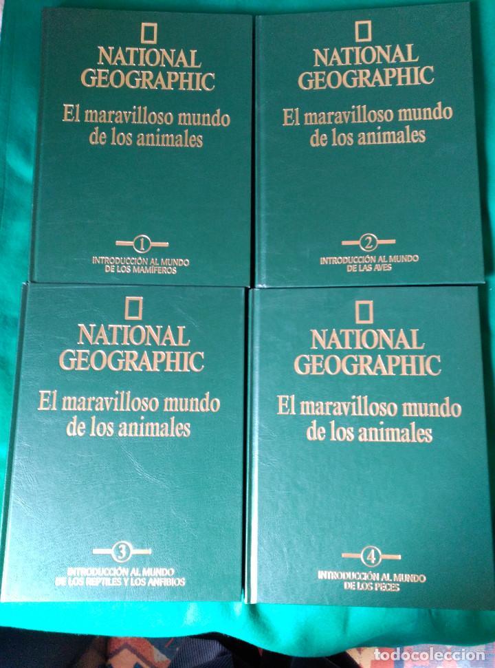 Enciclopedias de segunda mano: NATIONAL GEOGRAPHIC - EL MARAVILLOSO MUNDO DE LOS ANIMALES - 17 TOMOS - Foto 6 - 90113628