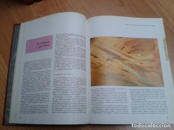 Enciclopedias de segunda mano: Enciclopedia completa ( 12 Tom ) Maravillas del saber - Consultor didáctico - Credsa Ediciones, 1976 - Foto 25 - 92126680