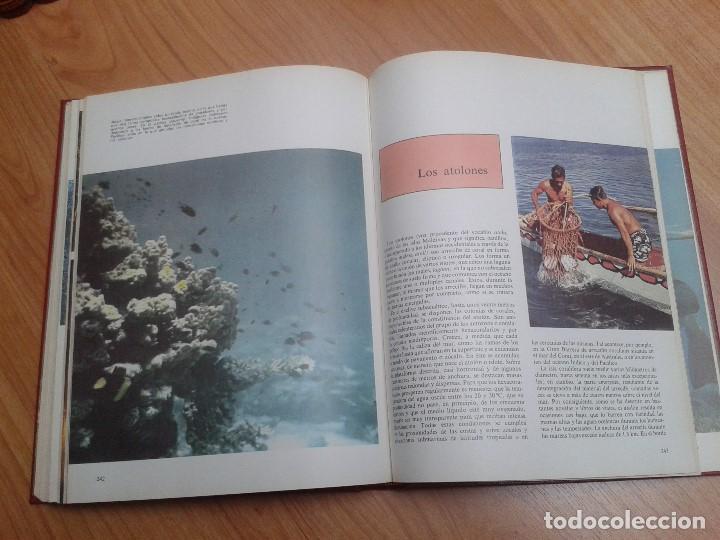 Enciclopedias de segunda mano: Enciclopedia completa ( 12 Tom ) Maravillas del saber - Consultor didáctico - Credsa Ediciones, 1976 - Foto 35 - 92126680