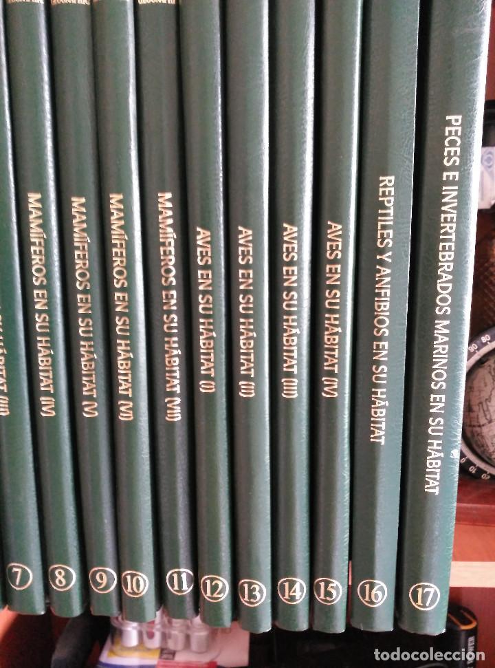 Enciclopedias de segunda mano: NATIONAL GEOGRAPHIC - EL MARAVILLOSO MUNDO DE LOS ANIMALES - 17 TOMOS - Foto 4 - 97104687