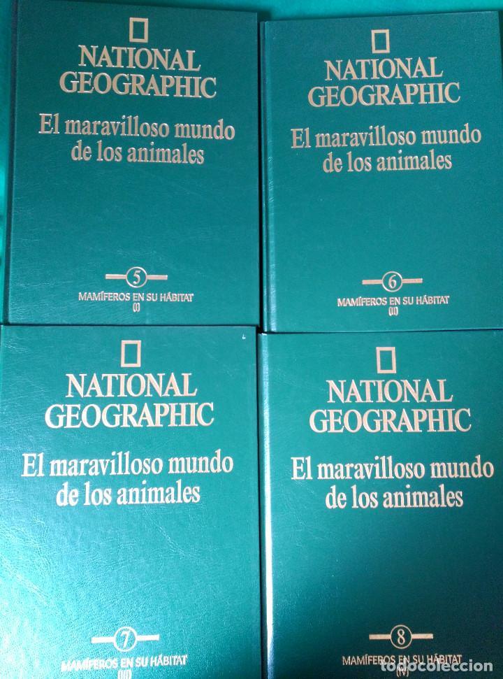 Enciclopedias de segunda mano: NATIONAL GEOGRAPHIC - EL MARAVILLOSO MUNDO DE LOS ANIMALES - 17 TOMOS - Foto 8 - 97104687