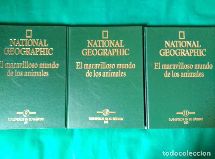 Enciclopedias de segunda mano: NATIONAL GEOGRAPHIC - EL MARAVILLOSO MUNDO DE LOS ANIMALES - 17 TOMOS - Foto 10 - 97104687