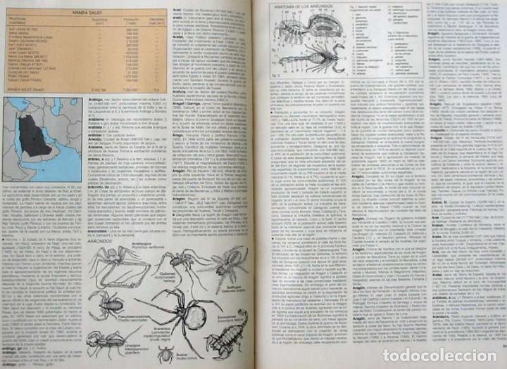 Enciclopedias de segunda mano: DICCIONARIO ENCICLOPÉDICO LAROUSSE - COMPLETO + 1 TOMO SUPLEMENTO - 2852 PÁGINAS - VER - Foto 6 - 99282095