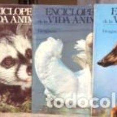 Enciclopedias de segunda mano: ENCICLOPEDIA DE LA VIDA ANIMAL. Lote 103871447