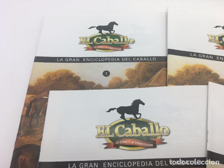Enciclopedias de segunda mano: FASCICULO 1 - 2 - 3 - 4 - 5 DE LA GRAN ENCICLOPEDIA DEL CABALLO - EDICIONES DEL PRADO - Foto 2 - 108437899