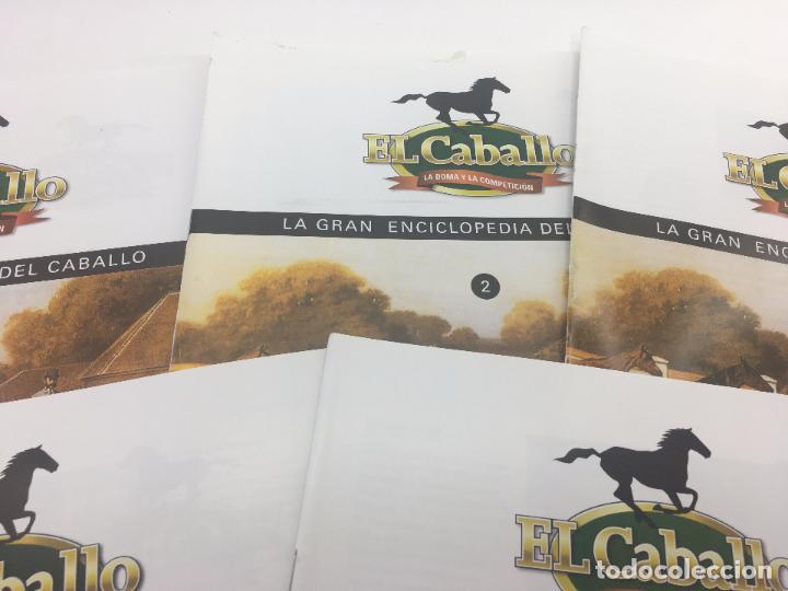 Enciclopedias de segunda mano: FASCICULO 1 - 2 - 3 - 4 - 5 DE LA GRAN ENCICLOPEDIA DEL CABALLO - EDICIONES DEL PRADO - Foto 3 - 108437899