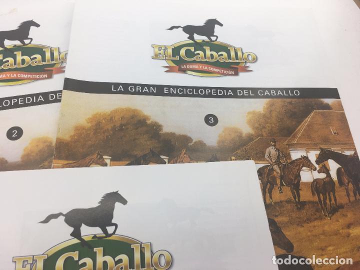 Enciclopedias de segunda mano: FASCICULO 1 - 2 - 3 - 4 - 5 DE LA GRAN ENCICLOPEDIA DEL CABALLO - EDICIONES DEL PRADO - Foto 4 - 108437899