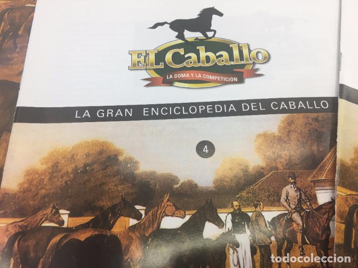 Enciclopedias de segunda mano: FASCICULO 1 - 2 - 3 - 4 - 5 DE LA GRAN ENCICLOPEDIA DEL CABALLO - EDICIONES DEL PRADO - Foto 5 - 108437899