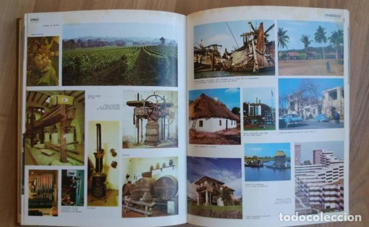 Enciclopedias de segunda mano: DICCIONARIO ENCICLOPÉDICO+10 VOLÚMENES, COMPLETO+ED. PLAZA & JANÉS+1981 - Foto 5 - 109158555