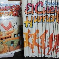 Enciclopedias de segunda mano: ÉRASE UNA VEZ EL CUERPO HUMANO. TOMOS DEL 1 AL 30 (FALTA EL 19).ED. PLANETA-AGOSTINI. BARCELONA 1995. Lote 112320263