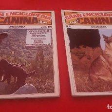 Enciclopedias de segunda mano: GRAN ENCICLOPEDIA CANINA. BRUGUERA. 1980. FASCÍCULOS 1 AL 19. . Lote 125289595