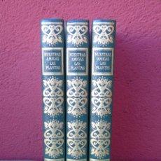 Enciclopedias de segunda mano: ENCICLOPEDIA DE LAS PLANTAS. NUESTRAS AMIGAS LAS PLANTAS. 3 TOMOS. POR DANIELE MANTA Y DIEGO SEMOLLI. Lote 126235735