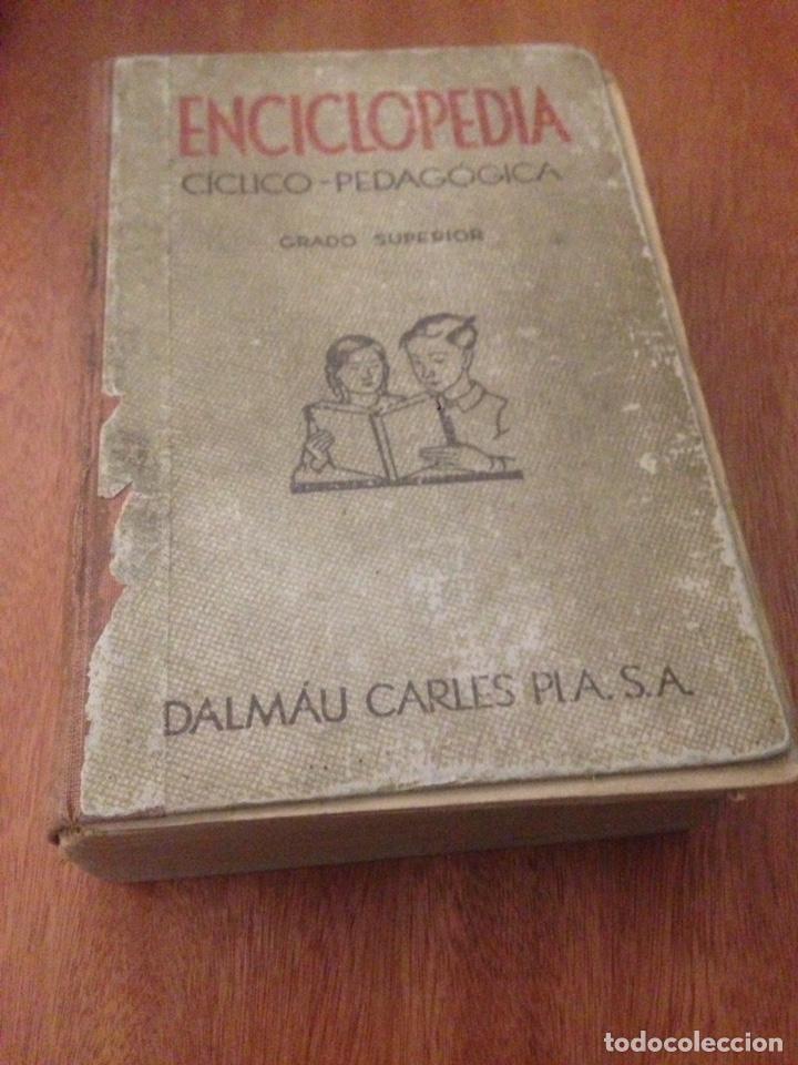 ENCICLOPEDIA CÍCLICO PEDAGÓGICA. GRADO SUPERIOR DALMAU CARLES PLA (Libros de Segunda Mano - Enciclopedias)