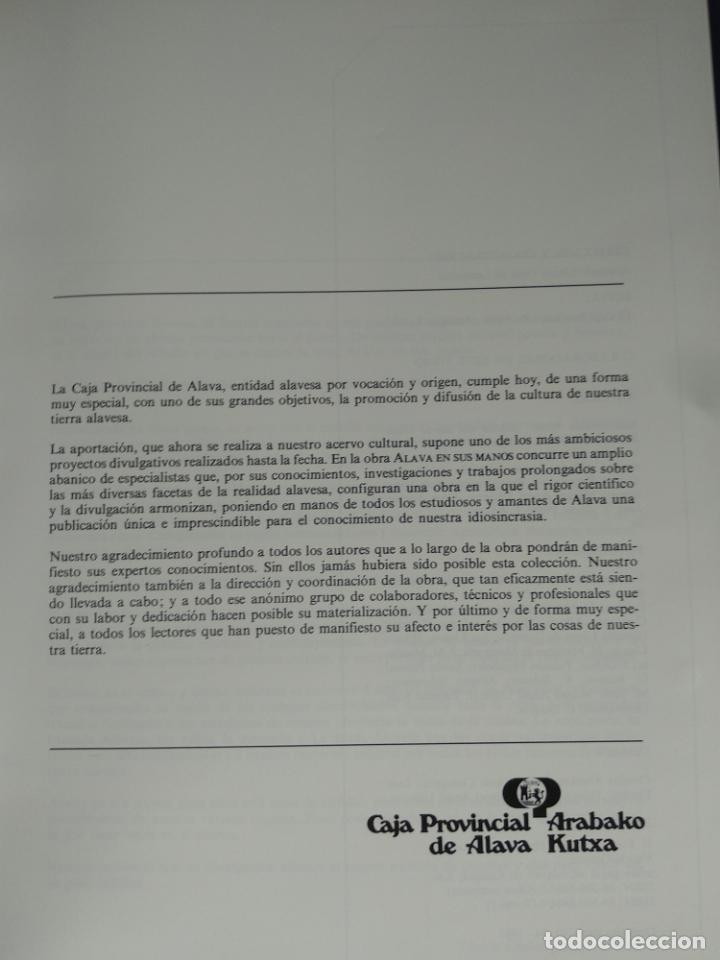 Enciclopedias de segunda mano: ÁLAVA EN SUS MANOS - CAJA PROVINCIAL DE ÁLAVA - 5 TOMOS - HERACLIO FOURNIER - VITORIA - 1983 - - Foto 2 - 140739782