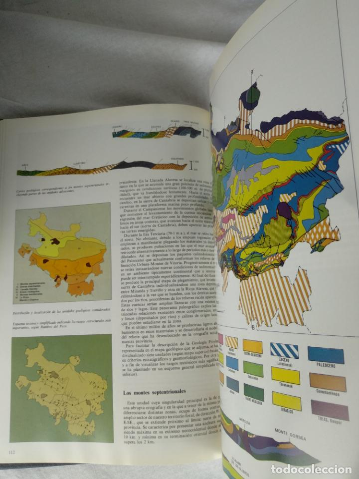 Enciclopedias de segunda mano: ÁLAVA EN SUS MANOS - CAJA PROVINCIAL DE ÁLAVA - 5 TOMOS - HERACLIO FOURNIER - VITORIA - 1983 - - Foto 9 - 140739782