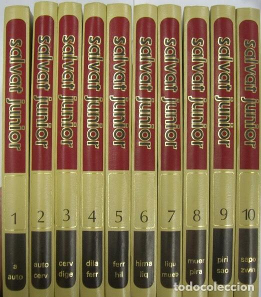ENCICLOPEDIA SALVAT JUNIOR SALVAT S:A: DE EDICIONES PAMPLONA AÑO 1972 (Libros de Segunda Mano - Enciclopedias)