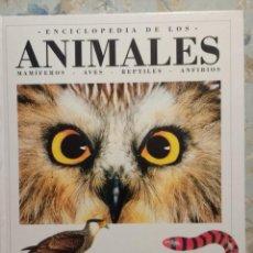 Enciclopedias de segunda mano: ENCICLOPEDIA DE LOS ANIMALES (MAMÍFEROS-AVES-REPTILES-ANFIBIOS). EDITADA POR LA C.A.M. E INFORMACIÓN. Lote 146557854