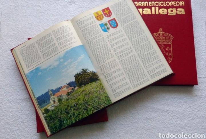 Enciclopedias de segunda mano: Gran enciclopedia gallega (36tomos) - Foto 3 - 149709952