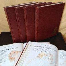 Enciclopedias de segunda mano - El Mundo de la Pareja - Completo - 6 tomos - 1982 - 153646578