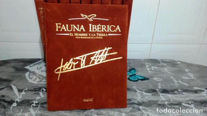 Enciclopedias de segunda mano: ENCICLOPEDIA COMPLETA FAUNA IBÉRICA - EL HOMBRE Y LA TIERRA - EDITORIAL SALVAT 1992 - Foto 2 - 155290834