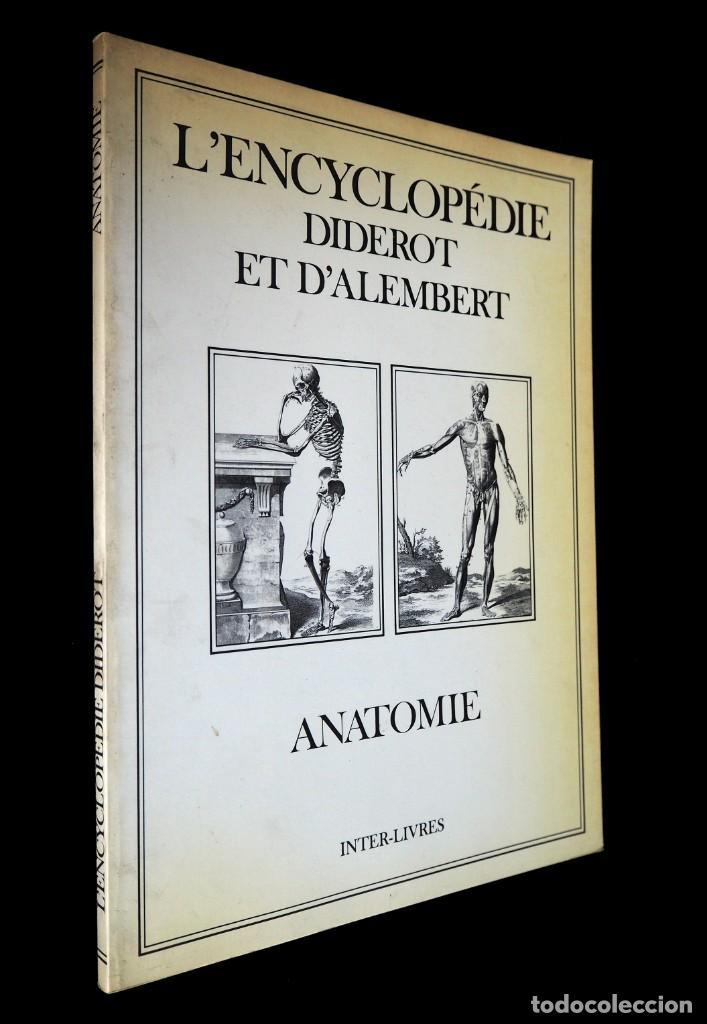 L'ENCYCLOPEDIE DIDEROT ET D'ALAMBERT. ANATOMIE. INTER LIVRES. 1994. (Libros de Segunda Mano - Enciclopedias)
