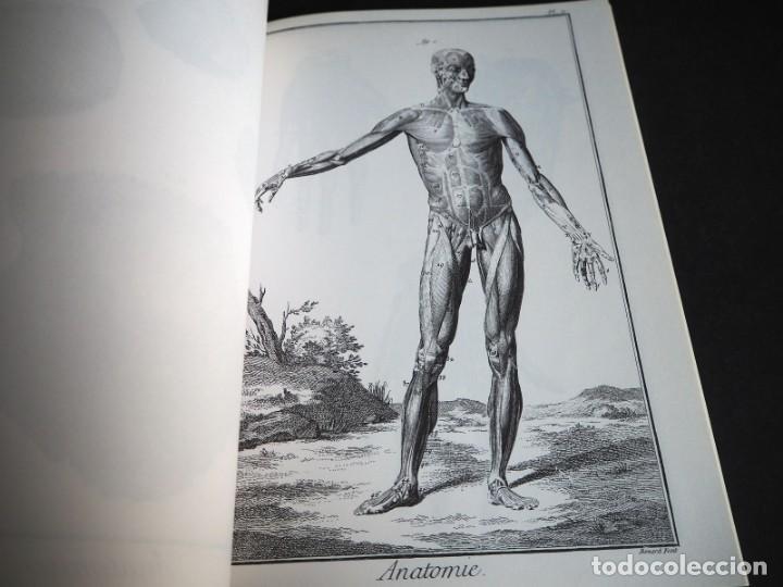 Enciclopedias de segunda mano: LENCYCLOPEDIE DIDEROT ET DALAMBERT. ANATOMIE. INTER LIVRES. 1994. - Foto 6 - 155782346
