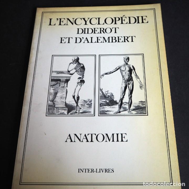 Enciclopedias de segunda mano: LENCYCLOPEDIE DIDEROT ET DALAMBERT. ANATOMIE. INTER LIVRES. 1994. - Foto 10 - 155782346