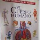 Enciclopedias de segunda mano: GRAN ENCICLOPEDIA DE BOLSILLO TIEMPO Nº 1 EL CUERPO HUMANO 1997. . Lote 160600266