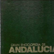 Enciclopedias de segunda mano: GRAN ENCICLOPEDIA DE ANDALUCÍA. ¡¡COMPLETA!!. 11 TOMOS. TIERRAS DEL SUR/CULTURA VIVA. ANEL(RF.MA)(Ñ). Lote 160987558