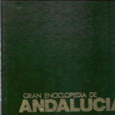 Enciclopedias de segunda mano: GRAN ENCICLOPEDIA DE ANDALUCÍA. TOMO 4. TIERRAS DEL SUR/CULTURA VIVA. EDCIONES ANEL.(RF.MA)(Ñ). Lote 160988798