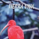 Enciclopedias de segunda mano: VESIV ENCICLOPEDIA TIERRA VIVA AUPPER AVES TOMO I . Lote 161188722