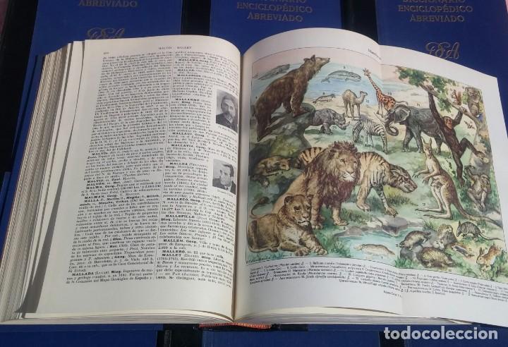 Enciclopedias de segunda mano: Diccionario Enciclopédico Abreviado, 8 Volúmenes, Completo (Espasa Calpe, 1957) // LAROUSSE / SALVAT - Foto 15 - 167418084
