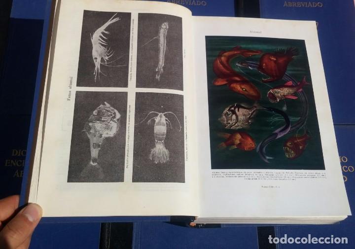 Enciclopedias de segunda mano: Diccionario Enciclopédico Abreviado, 8 Volúmenes, Completo (Espasa Calpe, 1957) // LAROUSSE / SALVAT - Foto 17 - 167418084