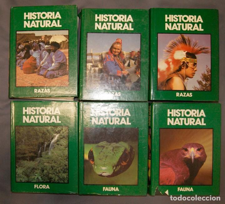 LOTE 6 ENCICLOPEDIA HISTORIA NATURAL DE CLUB INTERNACIONAL DEL LIBRO (Libros de Segunda Mano - Enciclopedias)