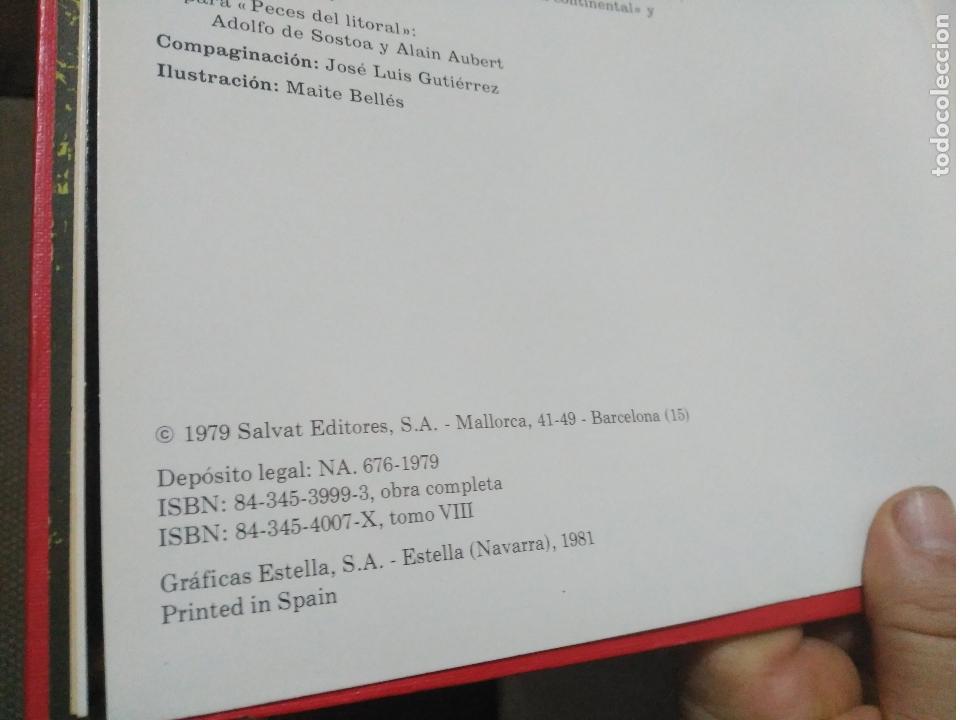 Enciclopedias de segunda mano: ENCICLOPEDIA COMPLETA FAUNA IBERICA Y EUROPEA FELIX RODRIGUEZ DE LA FUENTE AÑO 1979 - Foto 5 - 169198456