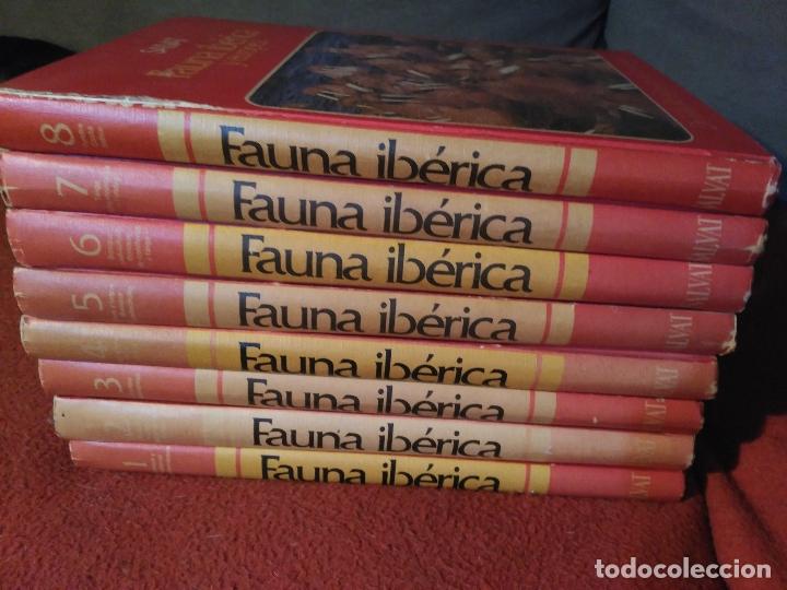 ENCICLOPEDIA COMPLETA FAUNA IBERICA Y EUROPEA FELIX RODRIGUEZ DE LA FUENTE AÑO 1979 (Libros de Segunda Mano - Enciclopedias)