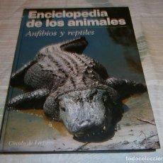Enciclopedias de segunda mano: ENCICLOPEDIA DE LOS ANIMALES ANFIBIOS Y REPTILES CIRCULO DE LECTORES. Lote 228359855