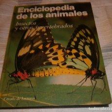 Enciclopedias de segunda mano: ENCICLOPEDIA DE LOS ANIMALES INSECTOS Y OTROS INVERTEBRADOS CIRCULO DE LECTORES. Lote 228359730
