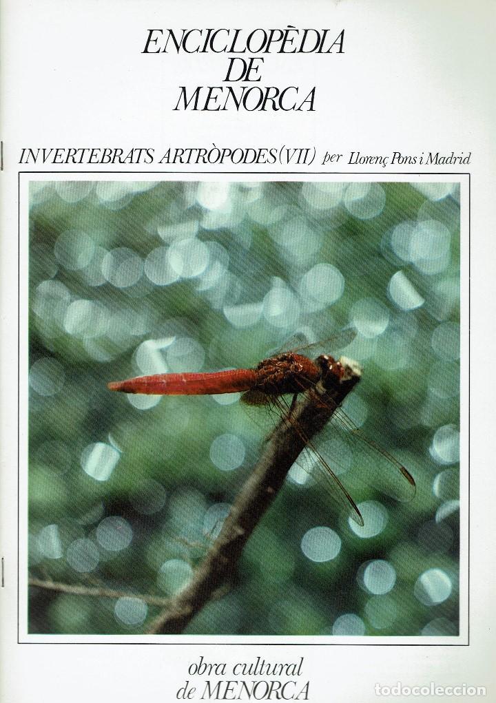 ENCICLOPÈDIA DE MENORCA.INVERTEBRATS ARTRÒPODES (VII), LLORENÇ PONS I MADRID. AÑO 1979.(MENORCA.6.8) (Libros de Segunda Mano - Enciclopedias)