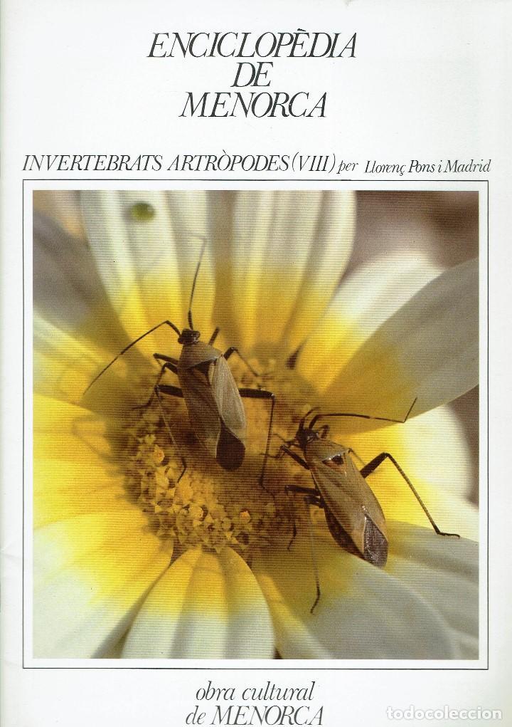 ENCICLOPÈDIA DE MENORCA.INVERTEBRATS ARTRÒPODES (VIII), LLORENÇ PONS I MADRID. AÑO 1979(MENORCA.6.8) (Libros de Segunda Mano - Enciclopedias)